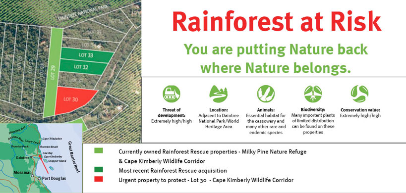 Rainforest at Risk - You are putting Nature back where Nature belongs.