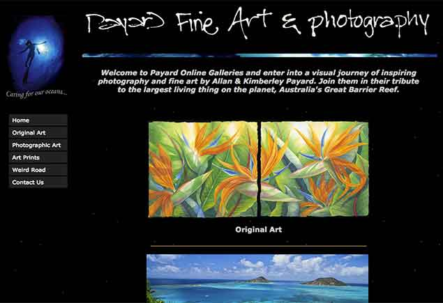 Kimberley Payard Turtle Cove Biopack Art Series Rainforest to Reef Rainforest Rescue Australia