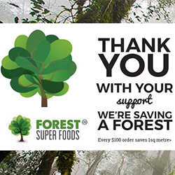 Forest Super Foods Product Partner Rainforest Rescue Saving Rainforests