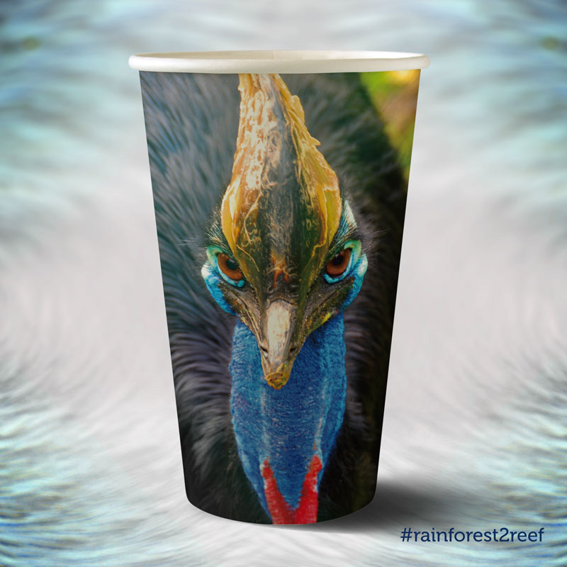 Paul Ijsendoorn Cassowary Biopack Art Series Rainforest to Reef Rainforest Rescue Australia