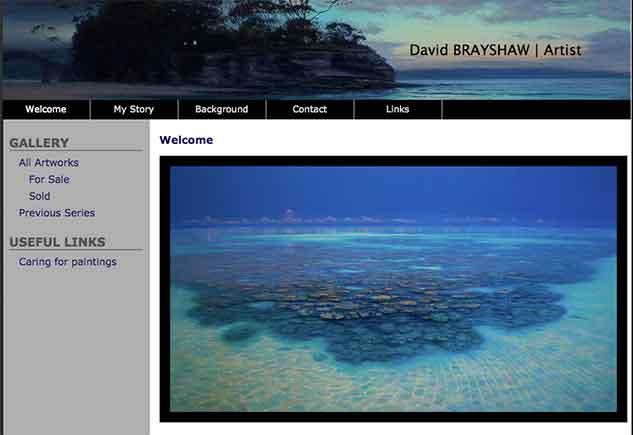 David Brayshaw Artist Rainforest to Reef Project Rainforest Rescue Australia