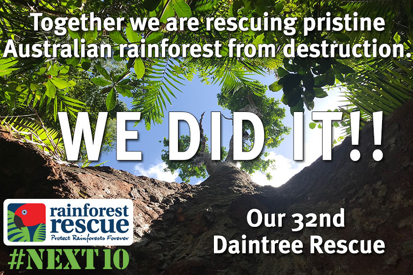 32nd Daintree Property Rescue