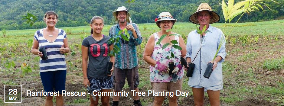 Rainforest Rescue Community Tree Planting Day May 2016